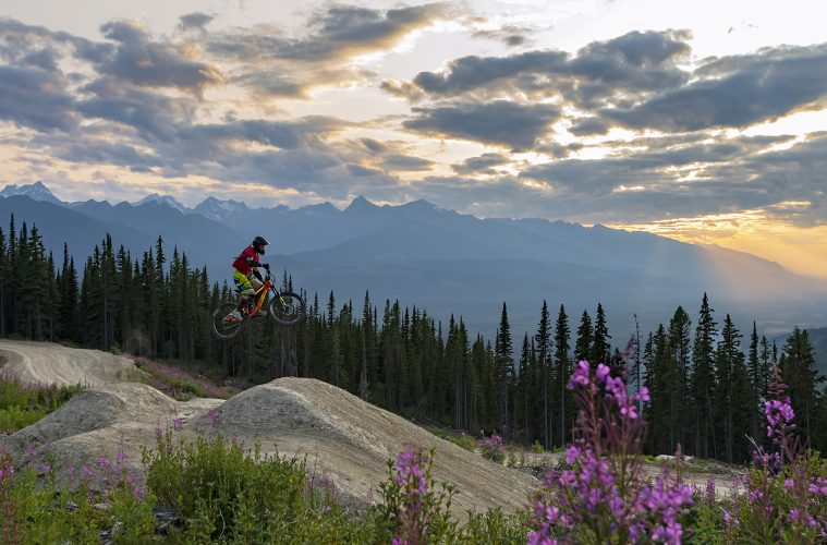 A mountain biker jumps a feature on a bike park at sunset in Valemount, British Columbia, Canada, Thompson Okanagan region