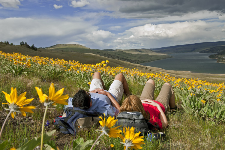 Hikers stop for a rest in the wildflowers about Stump Lake, British Columbia, Canada