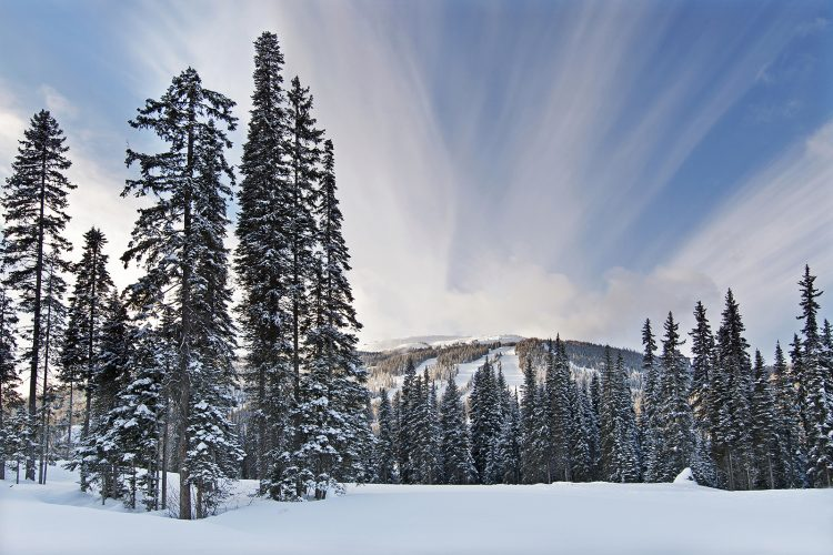 Image of Tod Mnt at Sun Peaks Resort in the middle of winter, near Kamoops, British Columbia, Canada