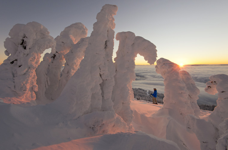 working for Tourism Sun Peaks at sunrise on a commercial shoot, a skier is dwarfed by huge snow ghosts at Sun Peaks Resort, near Kamloops, Thompson Okanagan region, Canada