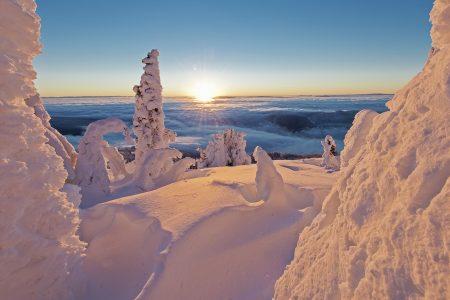 Snow Ghosts at the top of Tod Mountain at sunrise, Sun Peaks resort, near Kamloops, Thompson Okanagan region, British Columbia, Canada