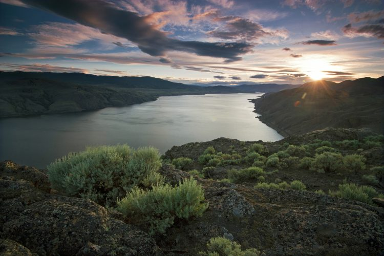 Sage over Kamloops Lake at sunset, Thompson Okanagan region, BC, Canada