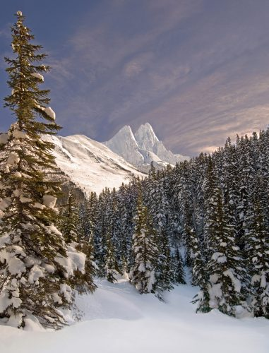Roger's Pass, Rocky Mountain region, BC, Canada