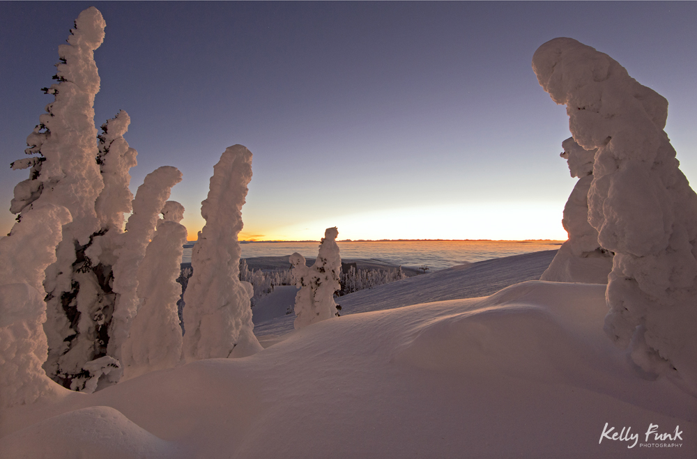 Snow ghosts create a beautiful environment before sunrise at the top of Sun Peaks Resort, Thompson Okangan region, British Columbia, Canada