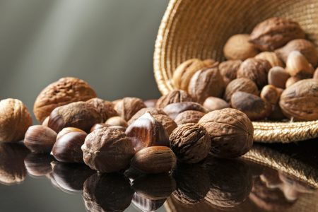 Nuts for a nut farm at showcased in a studio setting, Merritt, British Columbia, Canada