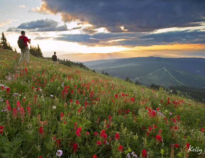 The Backcountry of Sun peaks - Experiential Perfection