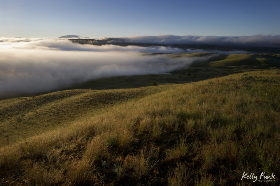 The Lac Du Bois Grasslands, north of Kamloops, British Columbia, Thompson Okanagan region, Canada at sunrise
