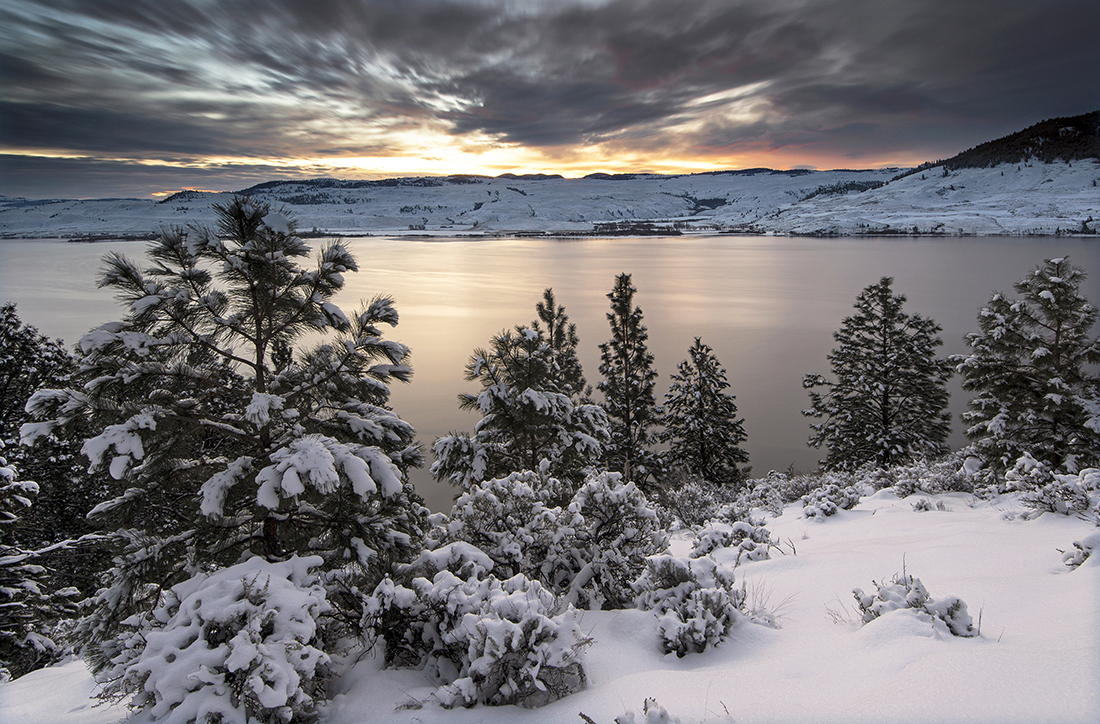Nicola lake at sunrise in the winter with fresh snow on the trees, British Columbia, Thompson Nicola region, Canada