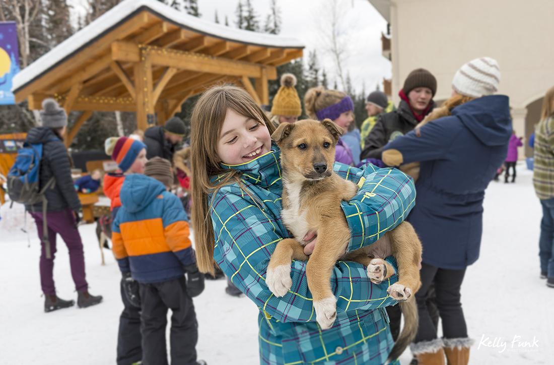 holiday kick off weekend and meeting the sled dogs, Sun Peaks Resort, near Kamloops, British Columbia, Thompson Okanagan region, Canada