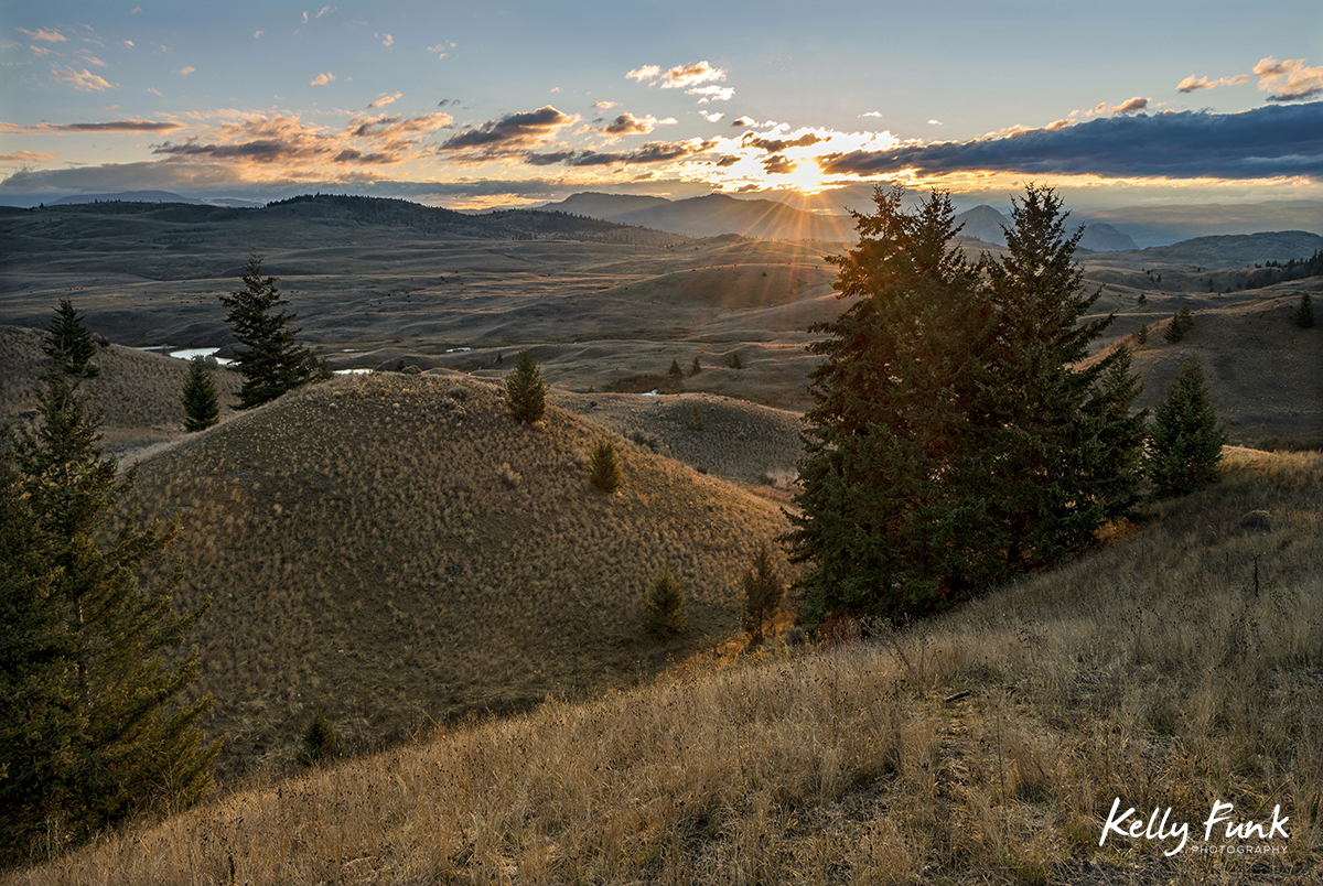 Lac Du Bois Grasslands at sunrise, near Kamloops, British Columbia, Canada