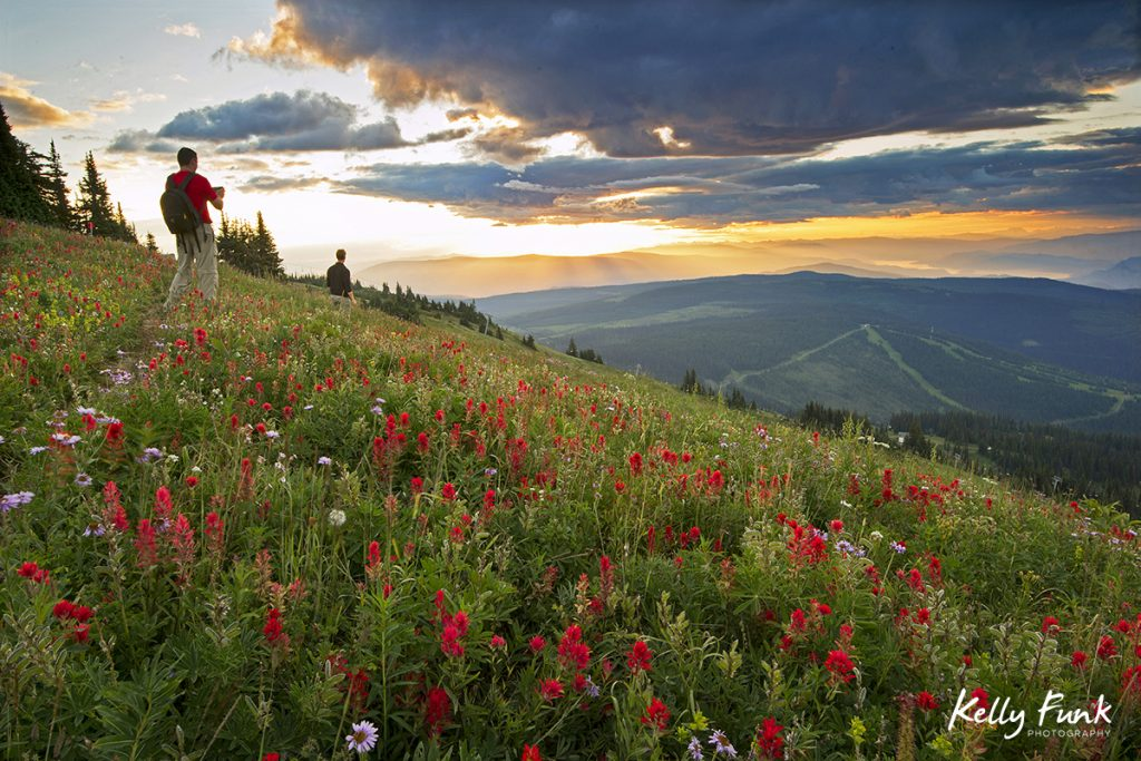 Sun Peaks and two hikers at sunrise enjoy the wildflowers on a stunning morning, British Columbia, Canada
