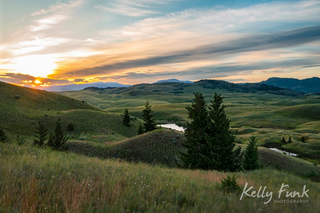 Sweeping grasslands at sunrise in Lac du Bois protected grasslands, British Columbia, Canada