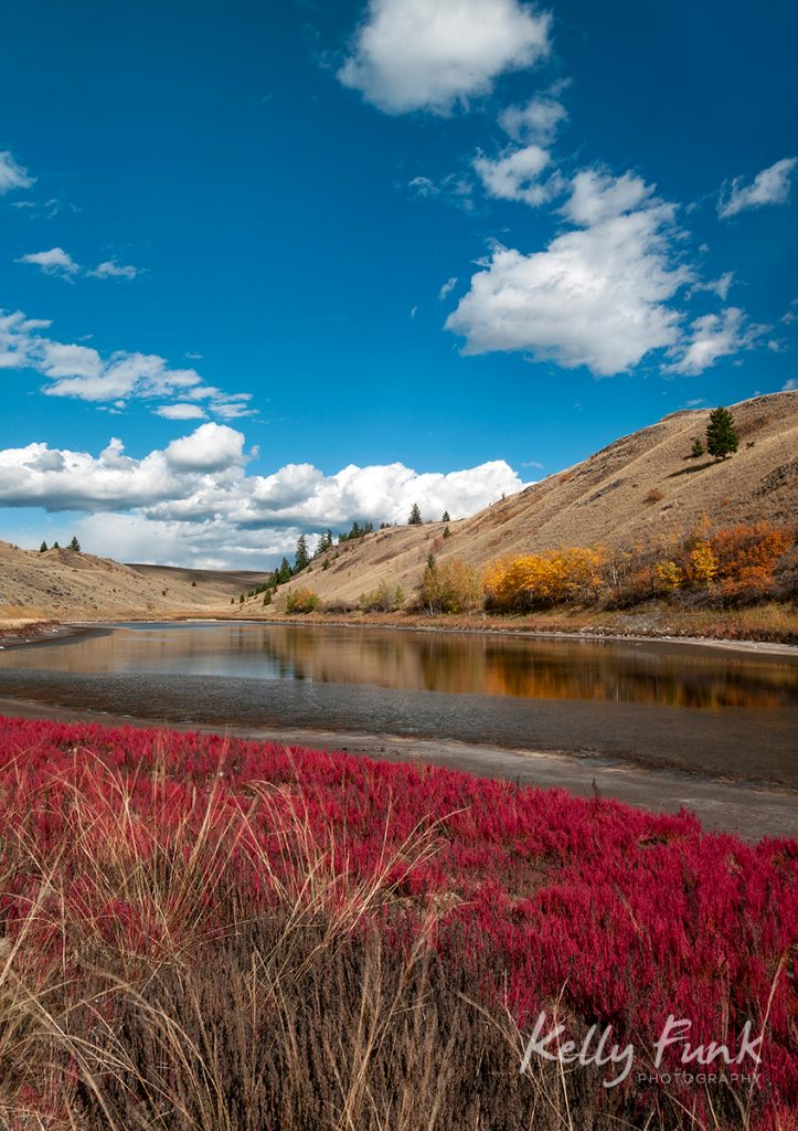 Fall foliage around a low elevation lake in Lac Du Bois Provincial Park, British Columbia, Canada