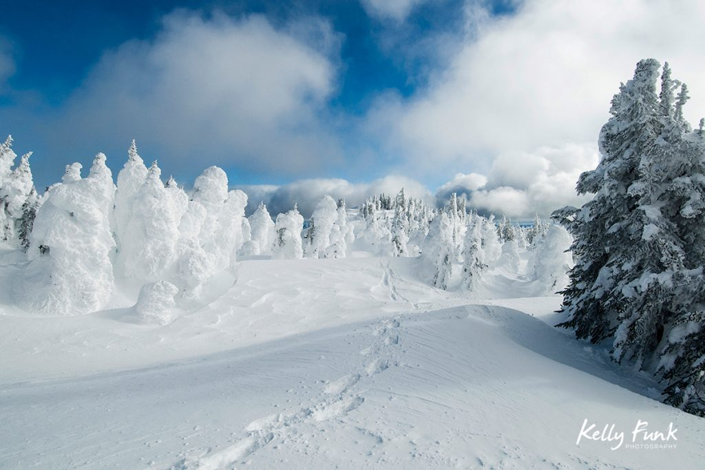 Tracks of a snowshoer are seen in amongst the snow ghosts at Sun Peaks Ski Resort, near Kamloops, British Columbia Canada
