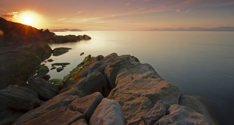 Tucked Away but Worth the Trek - Hornby Island