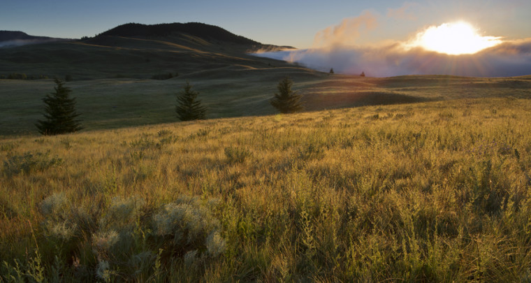 The Grasslands of Kamloops - A Place For the Senses