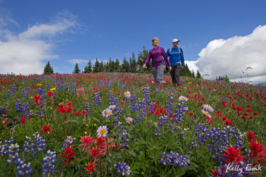 Hiking in the flowers, Sun Peaks resort, Kamloops, BC, Canada, commercial photographer, Kamloops photographer, professional, leisure activity, outdoors, nature