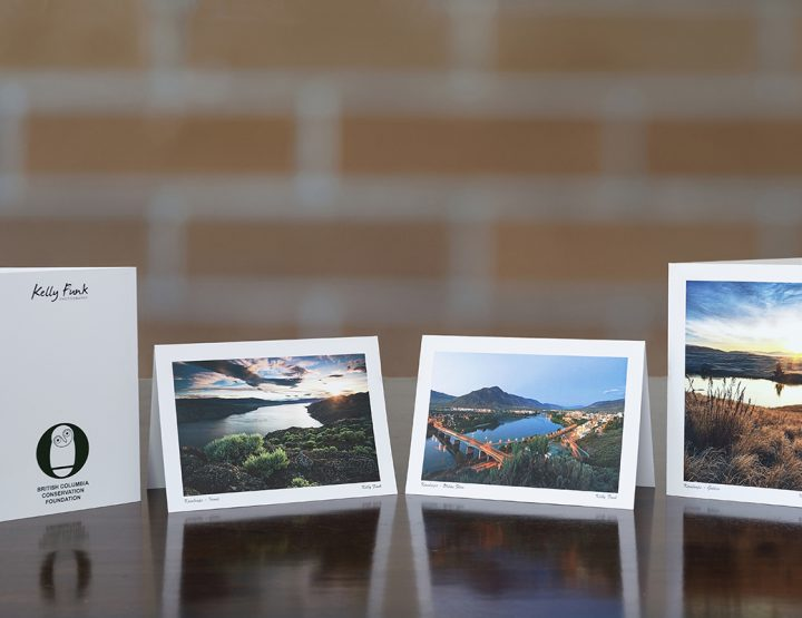 Kamloops Corporate Greeting Card clients:  CIBC & BCCF