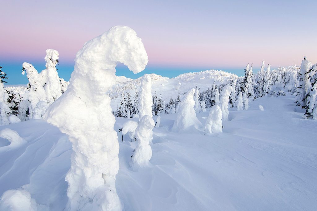 Snow Ghosts at the top of Tod Mountain, Sun Peaks resort, near Kamloops, Thompson Okanagan region, British Columbia, Canada