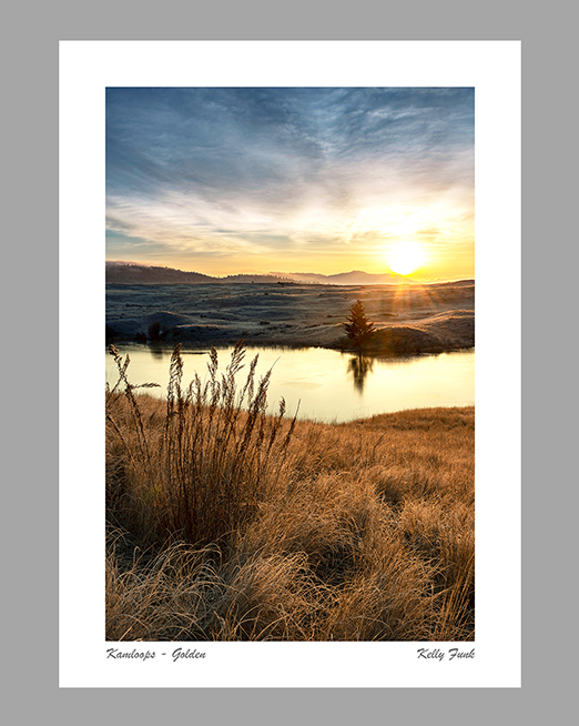 Kamloops and Sun Peaks Greeting card titled Golden
