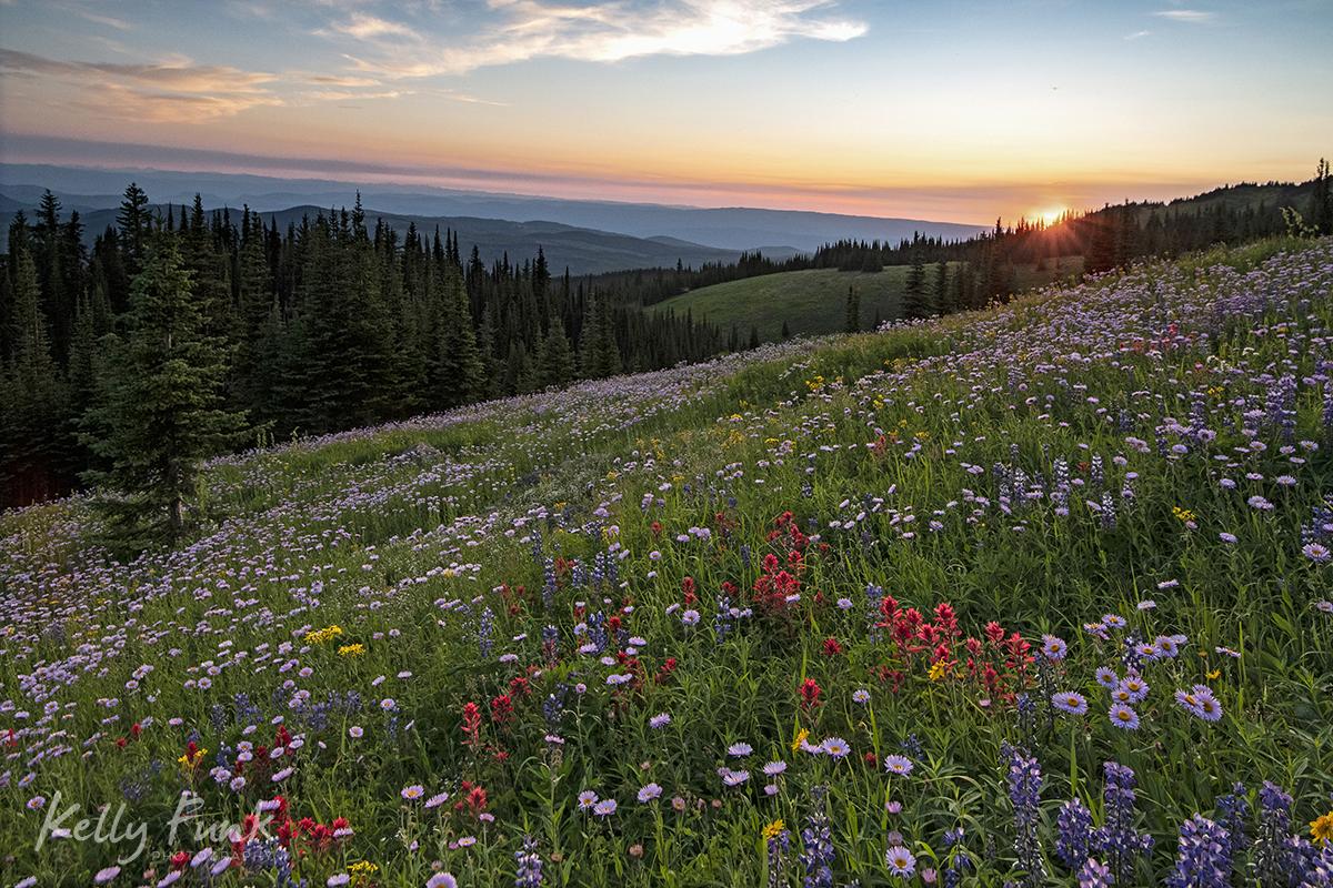 Client: Sun Peaks – Village to Alpine Bloom