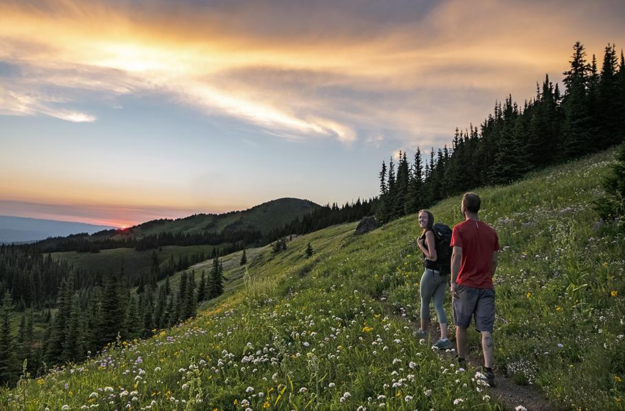 Sun Peaks hikers