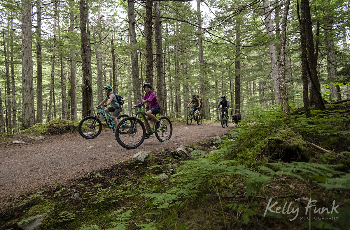 biking mount robson 5